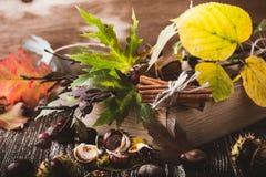 Украшение осени домашнее с каштанами, грецкими орехами, циннамоном, leav Стоковая Фотография