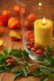 Украшение осени плодов шиповника и свечи Стоковая Фотография