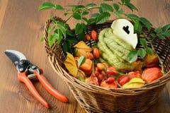 Украшение осени плодов шиповника floristry Стоковые Изображения