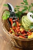 Украшение осени с плодами шиповника и инструментами Стоковое Изображение RF