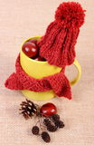 Украшение осени с чашкой обернуло шарф и шерстяную крышку на мешковине Стоковое Фото