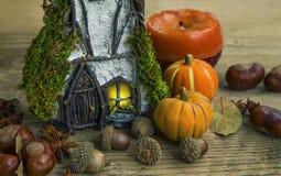 Украшение осени с fairy домом, тыквами и жолудями Стоковое фото RF