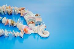 Украшение от пестротканых seashells на голубой предпосылке, экземпляр-космосе для текста стоковое изображение
