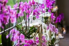 Украшение от розовых цветков и свечей Стоковые Изображения RF