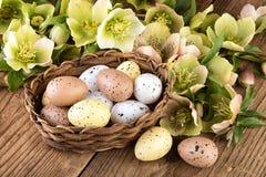Украшение пастельных цветов пасхальных яя Стоковые Фотографии RF