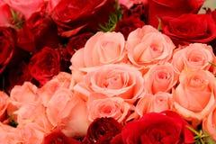 Украшение пинка и красной розы стоковое изображение