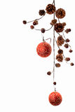 украшение рождества ветви фона Стоковые Фото
