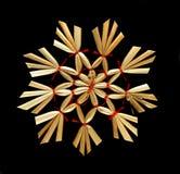 украшение рождества естественное Стоковые Фото