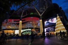 Украшение рождества на дороге сада Сингапур Стоковые Фото