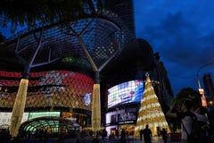 Украшение рождества на дороге сада Сингапур Стоковое Изображение RF