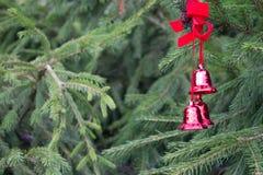 Украшение рождества с красными колоколами на пушистых елевых ветвях B Стоковое Фото