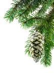 украшение рождества Стоковое Изображение
