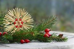 Украшение рождества, звезда соломы, плоды шиповника и сосна разветвляют Стоковое Фото