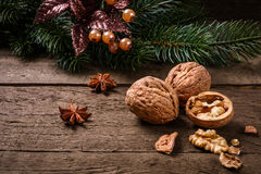 Украшение рождества с грецкими орехами Стоковые Фото