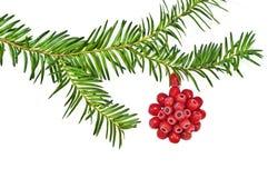 Украшение рождества с красным деревом yew плодоовощ на белой предпосылке Стоковое Фото