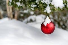 Украшение рождества Snowy вися с дерева Стоковое Фото