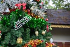 Украшение, рождественская елка детали в саде Стоковые Изображения