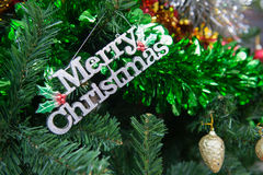 Украшение, рождественская елка детали в саде Стоковые Фото