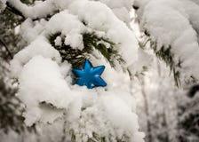 Украшение рождественской елки - голубая звезда Стоковое фото RF