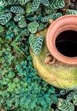Украшение сада опарником гончарни, кувшином гончарни Стоковое Изображение RF