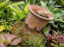 Украшение сада опарником гончарни Стоковые Фотографии RF