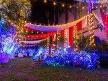 Украшение света рождества в саде Стоковые Фотографии RF