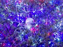 Украшение света рождества на дереве Стоковая Фотография