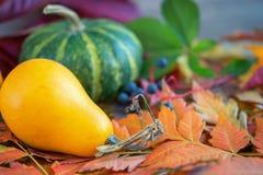 Украшение сезона падения с листьями тыквы и листвы красочными Стоковые Изображения RF