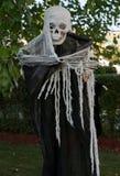 Украшение скелета Haloween Стоковые Изображения