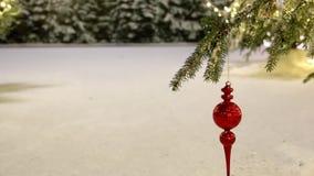 Украшение, снег и кусты рождественской елки видеоматериал