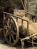 украшение средневековое Стоковые Фотографии RF