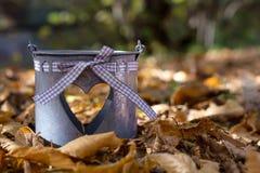 Украшение сцены осени в лесе с листьями и баками осени для цветков Стоковые Фото