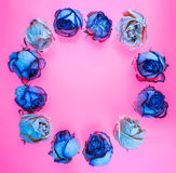 Украшение сделанное из высушенных розовых цветков Предпосылка роз Стоковые Изображения RF