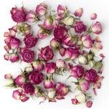 Украшение сделанное из высушенных цветков розы пинка Плоское положение Стоковая Фотография