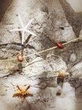 Украшение с повешенными морскими звёздами и рыболовная сеть на стене стоковое фото rf