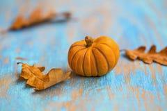 Украшение тыкв осени Стоковое Изображение RF