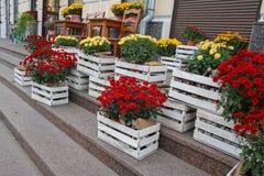 Украшение улицы цветочного магазина Стоковая Фотография