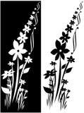 украшение флористическое Иллюстрация вектора