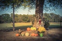 Украшение хеллоуина на сельском Арканзасе, США Стоковые Фотографии RF