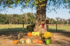 Украшение хеллоуина на сельском Арканзасе, США Стоковые Фото