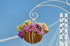 Украшение цветочного горшка на мосте стоковые фото