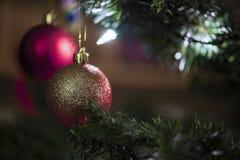 Украшение шарика рождественской елки красное Стоковое фото RF