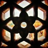 Украшение янтарного форта (Раджастхана, Индии) Стоковые Изображения