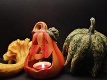 украшение halloween Стоковые Фото