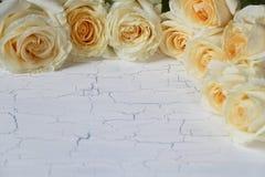 Украшение Rosebuds на белой предпосылке Стоковые Фото