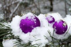 Украшения зимы на снаружи Стоковая Фотография