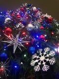 Украшения и света на рождественской елке в парке Bryant Стоковое Изображение