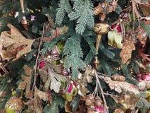 Украшения Кристмас на рождественской елке стоковое изображение