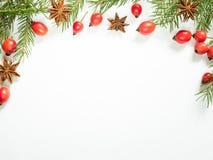 Украшения на белой предпосылке, плоды шиповника рождества ягод, звезды, ель разветвляют скопируйте космос Стоковые Фотографии RF