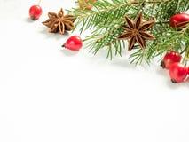 Украшения на белой предпосылке, плоды шиповника рождества ягод, звезды, ель разветвляют скопируйте космос стоковое изображение